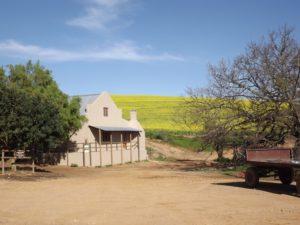 Dassenheiwel farm