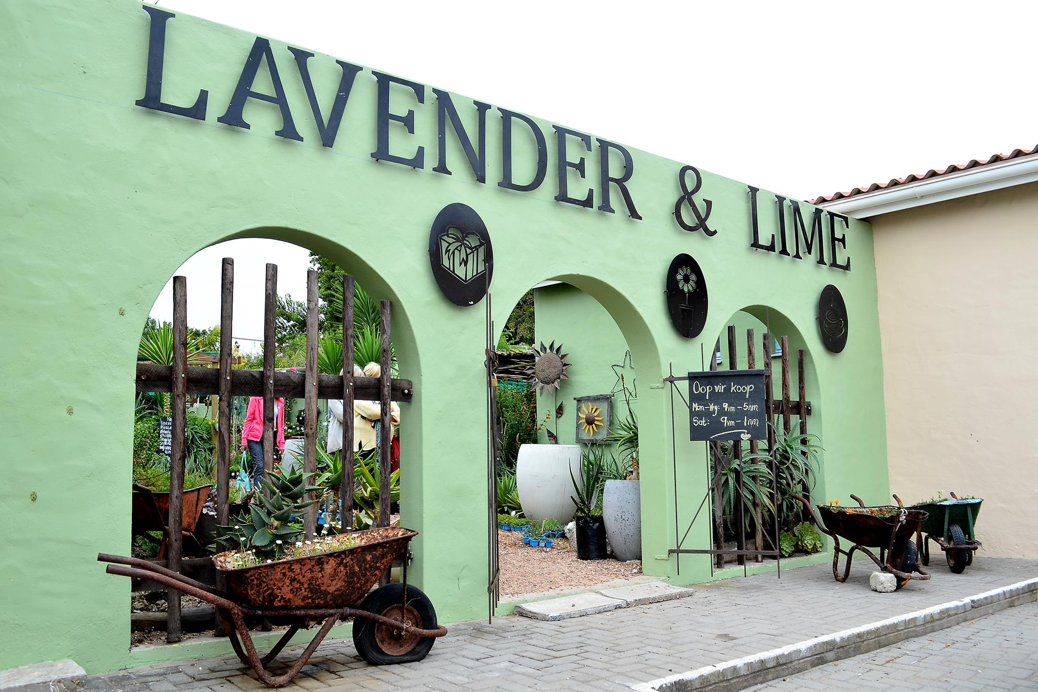 lavender and lime.JPG