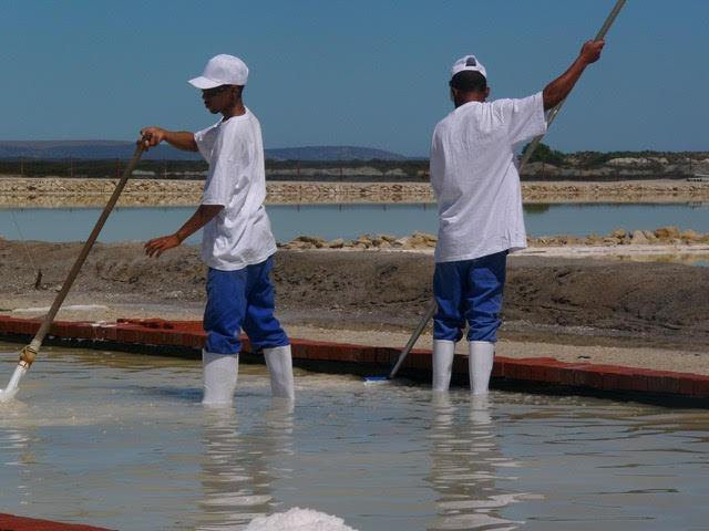 Salt of the Earth - a Velddrif Family Business